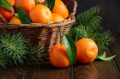 Świezi tangerine clementines na ciemnym drewnianym tle, Bożenarodzeniowy pojęcie fotografia stock