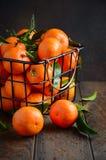 Świezi tangerine clementines z liśćmi na ciemnym drewnianym tle obrazy royalty free