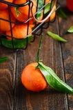 Świezi tangerine clementines z liśćmi na ciemnym drewnianym tle zdjęcie stock