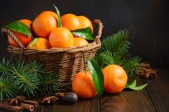 Świezi tangerine clementines z pikantność na ciemnym drewnianym tle, Bożenarodzeniowy pojęcie zdjęcia royalty free
