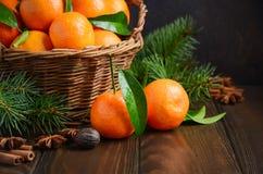 Świezi tangerine clementines z pikantność na ciemnym drewnianym tle, Bożenarodzeniowy pojęcie zdjęcie royalty free