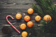Świezi tangerines i miętowego cukierku trzcina z zieloną jodłą rozgałęziają się Zdjęcie Royalty Free