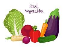 Świezi warzywa - bok choy, oberżyna, marchewka, ogórek, cebula, dzwonkowy pieprz royalty ilustracja