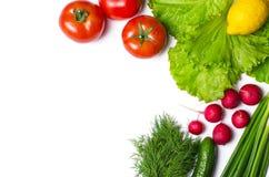 Świezi warzywa i sałatka odizolowywający na bielu z kopii przestrzenią obrazy stock