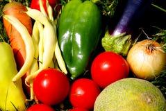 Świezi warzywa na trawie Zdjęcia Royalty Free