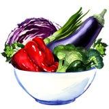 Świezi warzywa - oberżyna, kapusta, pieprz ilustracja wektor