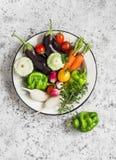Świezi warzywa - oberżyna, rzodkiew, dzwonkowy pieprz, pomidory, macierzanka, oregano w emaliowym pucharze na lekkim tle Zdjęcie Stock