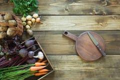 Świezi warzywa od marchewki, beetroot, cebula, czosnek, grula na drewnianej desce Odgórny widok życie ciągle jesieni kosmos kopii Obraz Royalty Free