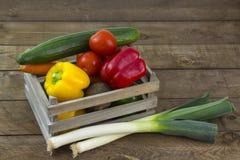 Świezi warzywa w pudełku fotografia royalty free
