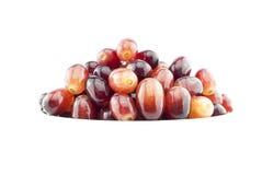 Świezi winogrona w białym pucharze Obrazy Royalty Free