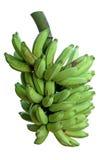 świezi z drzewa jabłczani banany Fotografia Stock