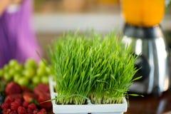Świezi ziele i owoc na kontuarze przy zdrowie sklepu spożywczego sklepem Zdjęcie Royalty Free