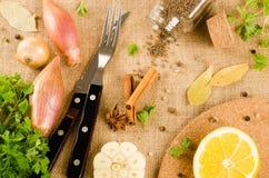 Świezi ziele i pikantność (czosnek, pieprz, podpalani liście, kumin, cinn Fotografia Stock