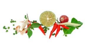Świezi ziele i pikantność odizolowywający na białym tle Obraz Royalty Free