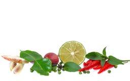 Świezi ziele i pikantność odizolowywający na białym tle Fotografia Royalty Free