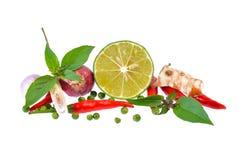 Świezi ziele i pikantność odizolowywający na białym tle Zdjęcie Royalty Free