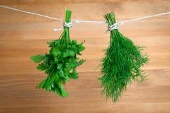 Świezi ziele: pietruszka i koper Obrazy Stock