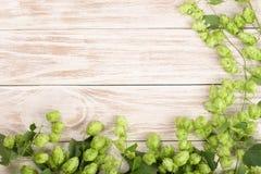 Świezi zieleni chmiel rożki na białym drewnianym tle Składnik dla piwnej produkci Odgórny widok z kopii przestrzenią dla twój tek Obraz Stock