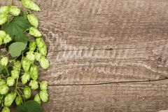 Świezi zieleni chmiel rożki na starym drewnianym tle Składnik dla piwnej produkci Odgórny widok z kopii przestrzenią dla twój tek Fotografia Stock