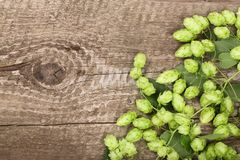 Świezi zieleni chmiel rożki na starym drewnianym tle Składnik dla piwnej produkci Odgórny widok z kopii przestrzenią dla twój tek Obraz Stock