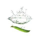 Świezi zieleni grochy bryzgają na wodzie, odosobnionej Zdjęcia Royalty Free