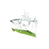 Świezi zieleni grochy bryzgają na wodzie, odosobnionej Fotografia Royalty Free