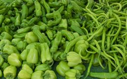 Świezi zieleni pieprze przy rolnika rynkiem zdrowa żywność obrazy royalty free
