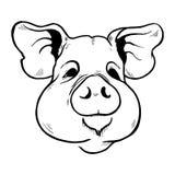 Świni głowy nakreślenie czarny i biały Obrazy Stock