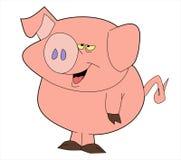 świnia Obrazy Stock