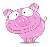 świnia ilustracji