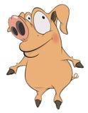 świnia kreskówka Obraz Stock