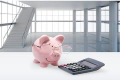 Świnia, podatek, Pieniężny Advisor Obrazy Royalty Free