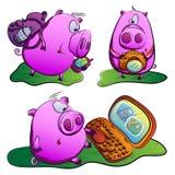 Świnia w podróży. zdjęcia stock