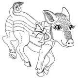 Świnia z tasiemkowym czarny i biały kreskowego rysunku szablonem dla grawerować, broderii, palący za drzewie i inny kreatywnie da fotografia stock