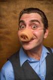 Świniowaty mężczyzna bankowiec Zdjęcia Royalty Free