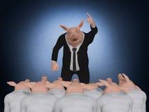 Świniowaty szefa mówienie Obrazy Royalty Free