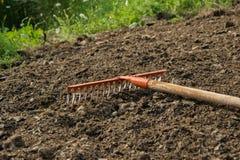 Świntuch w ziemi, uprawiać ogródek/rolniczy pracujący narzędzie Zdjęcie Royalty Free