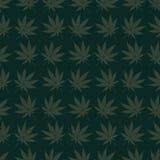 Świrzepa wzoru zieleń Zdjęcie Stock