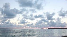 Świt w republice dominikańskiej na plaży zdjęcie wideo
