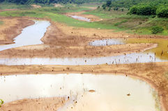 Źródła wody skołowanie, suszy ziemia, wodna ochrona Zdjęcia Royalty Free