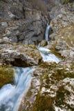 Źródło Sochy rzeka zdjęcie stock