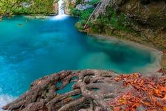 Źródło Urederra rzeka, Navarre, Hiszpania obraz royalty free