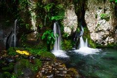 Źródło wiosny woda Obraz Royalty Free