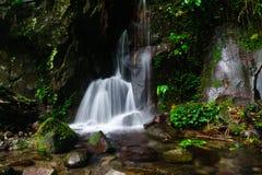 Źródło wiosny woda Zdjęcie Stock