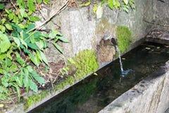 Źródło wody w górze Fotografia Royalty Free