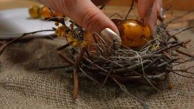 Żółci barwioni przepiórek jajka kłaść w wielkanocy gniazdeczku zbiory