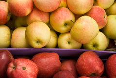 Żółci i czerwoni jabłka zdjęcia royalty free
