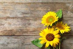 Żółci słoneczniki na drewnianym tle, zdjęcie royalty free