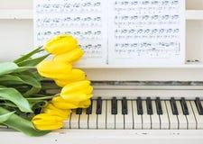 Żółci tulipany na białym pianinie fotografia stock