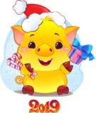 Żółta Earthy świnia z prezenta pudełkiem dla nowego roku 2019 Śliczny Symb zdjęcie stock